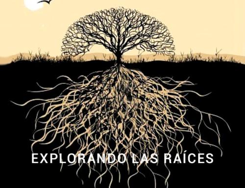 EXPLORANDO LAS RAÍCES